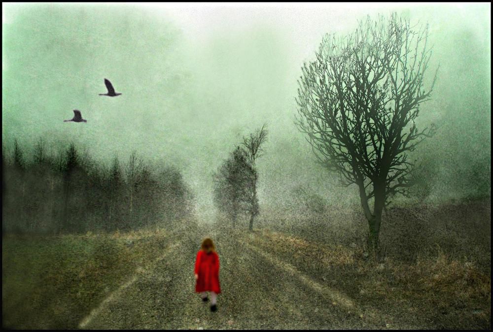 Ole Suszkiewicz - Foggy Walk