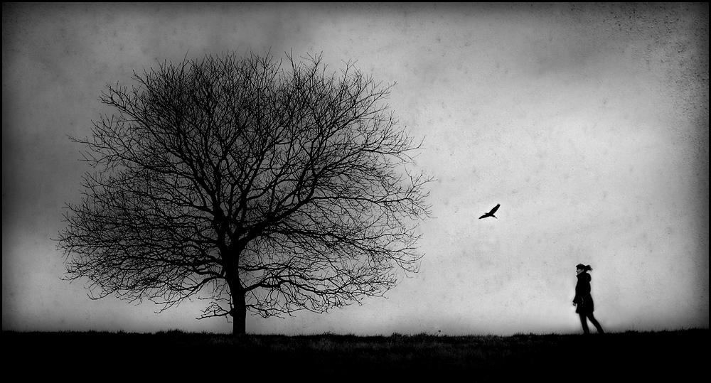 Ole Suszkiewicz - Tree of Life