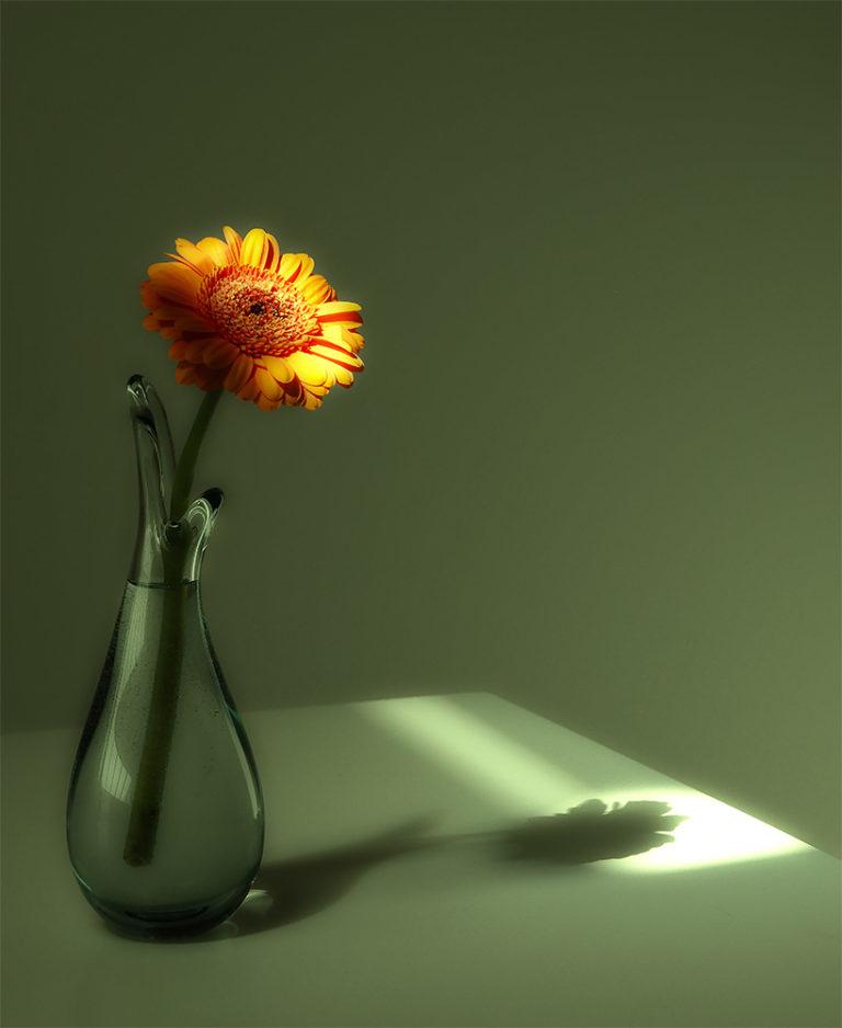 03 - John_Teglmand - Green and Orange