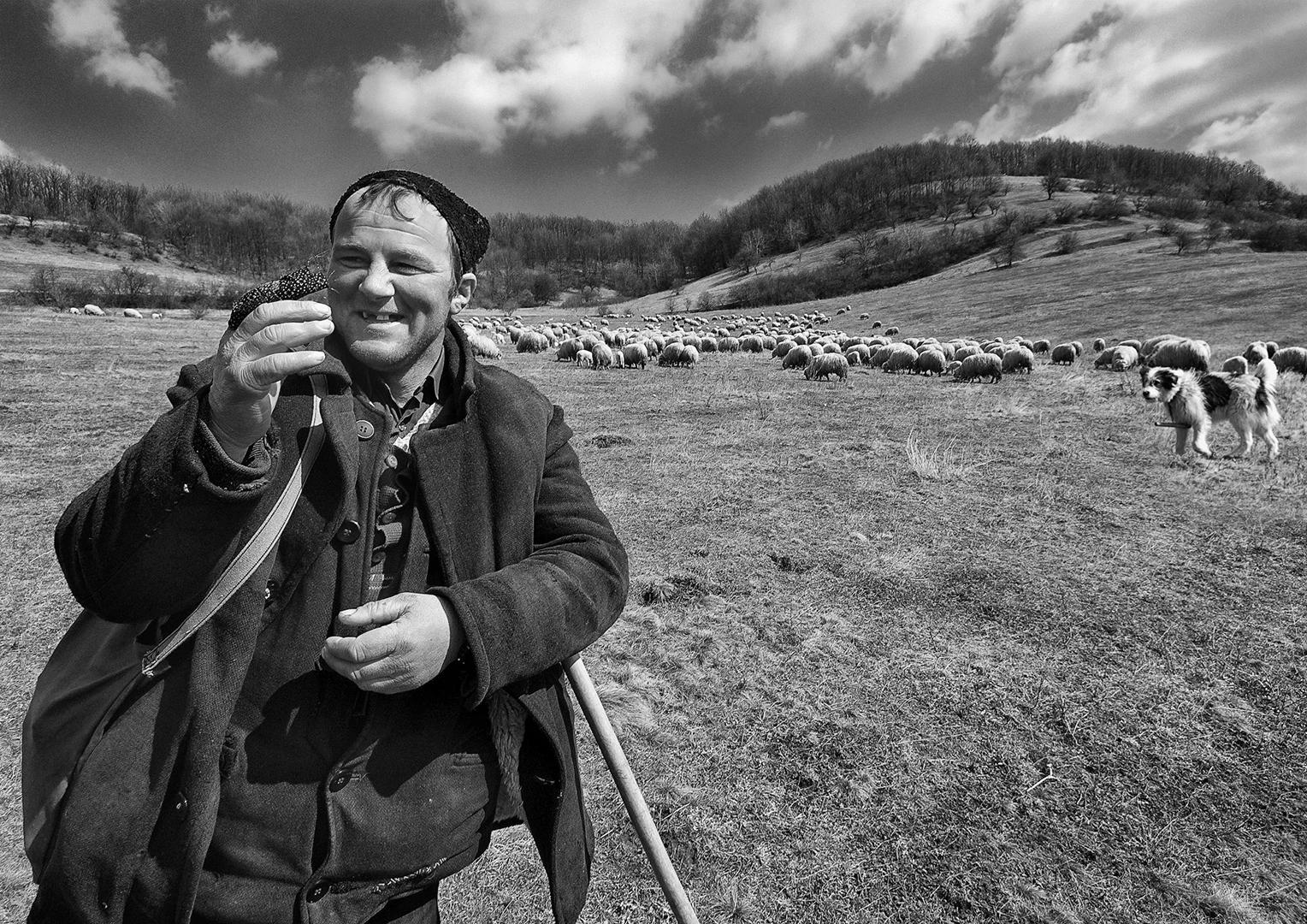 Shepherd with pain in the finger, Søren Skov